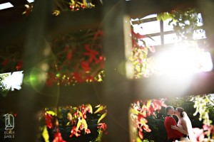 Newmarket Greenhouse Wedding (10)