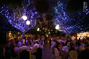 Newmarket Greenhouse Wedding (5)
