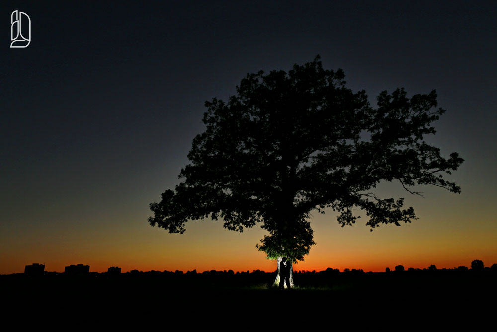 Sunset engagement session with Jessey, Jeremy and a tree in Ottawa